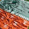 orange-colored-beautiful-branded-mina-weaving-silk-saree-dvz000216